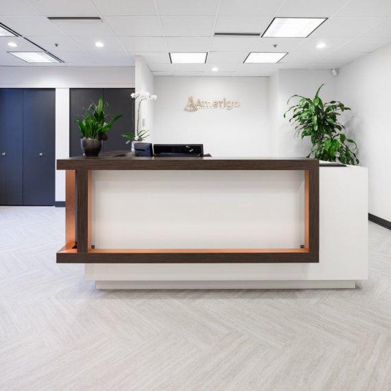 Amerigo - Aura Office Design Project 6